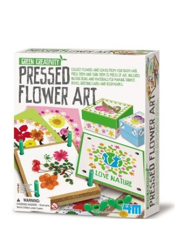 Green Creativity Pressed Flower Art Kit